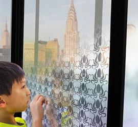 Smart Window feature